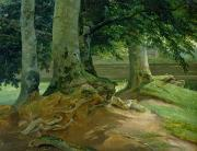 Tree Roots Painting Framed Prints - Beech Trees in Frederiksdal near Copenhagen Framed Print by Christian Ernst Bernhard Morgenstern