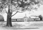 Buildings Drawings Framed Prints - Beechwood School in Marshallville Georgia Framed Print by Edna Garrett