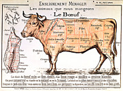 Kitchen Decor Drawings Prints - Beef Print by French School