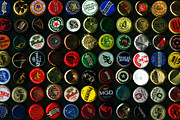 Beer Bottle Posters - Beer Bottle Caps . 8 to 12 Proportion Poster by Wingsdomain Art and Photography