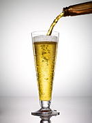Beer Photo Posters - Beer On White Background Poster by Adrianna Williams