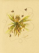 Fairies Drawings Posters - Bees to Honey Poster by Dawn Fairies