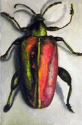 Beetle Print by Leah Saulnier The Painting Maniac