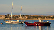 Boats In Harbor Metal Prints - Before Sundown Metal Print by Fraida Gutovich