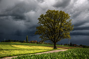 Thunderstorm Originals - Before the storm by Ivo Blochliger