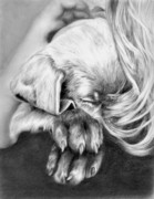 Animal Drawings Prints - Behind Closed Paws Print by Sheona Hamilton-Grant