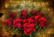 Red Flowers Digital Art - Behind the Glass by Svetlana Sewell