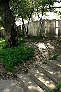 Dallas Photos - Behind the Grassy Knoll by Brian M Lumley