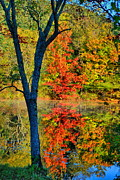 Fall Scene Posters - Behind The Y Poster by Emily Stauring