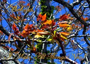 Red And Gold Leaves Framed Prints - Behold I Make All Things New Framed Print by Dale   Ford
