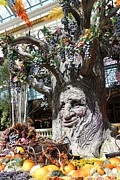 Belagio Prints - Belagio Talking Tree Too Print by Clark Thompson