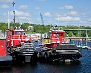 Belfast Tugboats Print by Susan Cole Kelly
