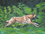 Belgian Paintings - Belgian Malinois running by L A Shepard
