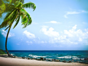 (c) 2010 Photo Prints - Belize Private Island Beach Print by Ryan Kelly