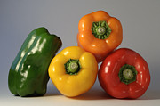 Peppers Photos - Bell Peppers by Andrew Campbell