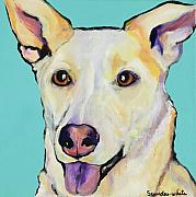 Yellow Dog Metal Prints - Bella Metal Print by Pat Saunders-White