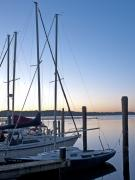 Alexandria Virginia Prints - Belle Haven Marina in Alexandria Virginia at sunrise Print by Brendan Reals