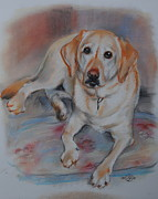 Labrador Retriever Pastels - Belle by Jiri Mesicki