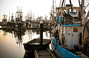 Craig Perry-Ollila - Bellingham Fishing Boats