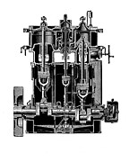 Technical Posters - Bellis And Morcom Steam Engine Poster by Mark Sykes