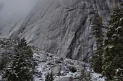 Landsape Photos - Below El Capitan by Stephen  Vecchiotti