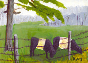 Oreo Prints - Belted Galloway Cow Painting Rockport Maine Print by Keith Webber Jr