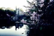 New York Prints - Belvedere Castle Print by Ariane Moshayedi