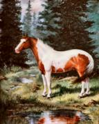  Paint Horse Posters - Ben Spooken Lupe    Paint Horse Poster by JoAnne Corpany