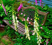 Julie Dant Artography Framed Prints - Bench Among the Foxgloves Framed Print by Julie Dant