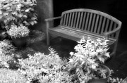 Jeff Holbrook Metal Prints - Bench and Flowers Metal Print by Jeff Holbrook