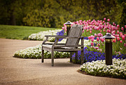 Cheekwood Prints - Bench In The Park Print by Cheryl Davis