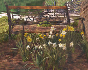 Amish Framed Prints - Bench Framed Print by Kathy Jennings