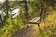 Scenic Idaho Prints - Bench with a View Print by Idaho Scenic Images Linda Lantzy