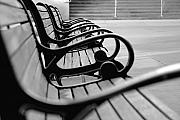 Black And White Art - Benches by Dan Holm