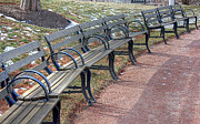 Park Benches Framed Prints - Benches in sun Framed Print by David Bearden