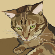 Bengal Digital Art - Bengal Kitty Pet Portrait by Robyn Saunders