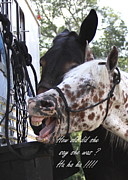 Benson Mule Day Birthday Card Photo Print by Travis Truelove