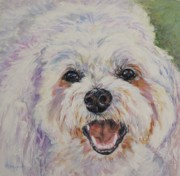 White Maltese Originals - Bentley by Andrea Agresta
