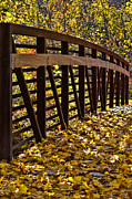 Piles Of Leaves Prints - Berkshire Bridge Print by Don Schwartz