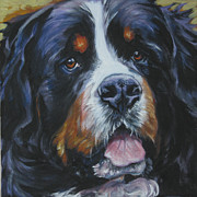 Dog Study Art - Bernese Mountain Dog head study by Lee Ann Shepard