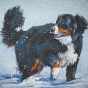 Bernese Mountain Dog Posters - Bernese Mountain Dog in drift Poster by L A Shepard