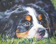 Bernese Mountain Dog Posters - Bernese Mountain Dog in grass Poster by L A Shepard