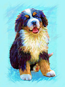 Puppy Digital Art Framed Prints - Bernese Mountain Dog Framed Print by Jane Schnetlage