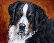 Berner Framed Prints - Bernese mountain dog on rust Framed Print by Dottie Dracos