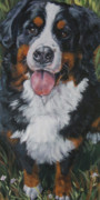 Berner Framed Prints - Bernese mountain dog standing Framed Print by L A Shepard
