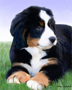 Snake Jagger Mixed Media Originals - Bernese mountain pup by Snake Jagger