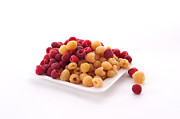 Food And Beverage Photo Originals - Berries by Catherine Lau