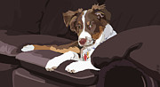 Aussie On Couch Framed Prints - Best Boy Framed Print by Kris Hackleman