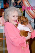 White Dog Framed Prints - Betty White, Dog At A Public Appearance Framed Print by Everett