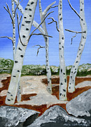 Birch Tree Paintings - Between Seasons  by Maria Williams